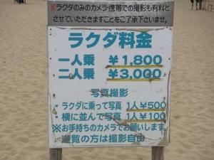 060910_rakuda1_1