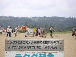 060910_rakuda2