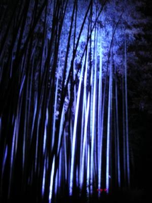 071217_arashi2