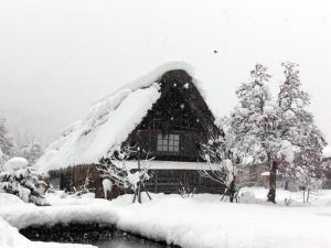 20110101_shirakawa03