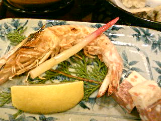 お魚の夜の写真1