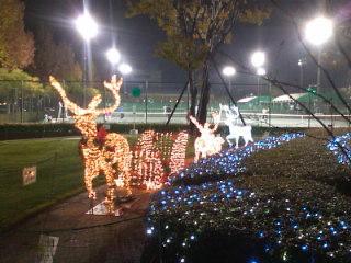 テニスコートのクリスマス