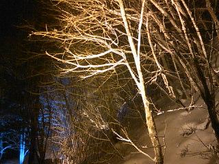 2日目雪ほたる
