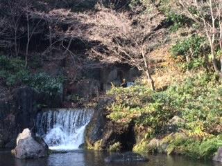 万博公園日本庭園
